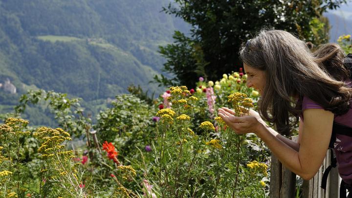 Вернуть запахи после COVID: Врач подсказал обонятельный тренинг
