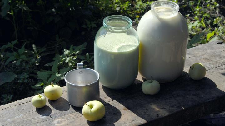 Самый дорогой ценник и антибиотики: Роскачество изучило молоко в СЗФО
