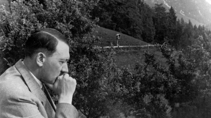 «Гомосексуальный Гитлер» - это попытки американцев оправдать себя за зверские преступления нацизма - эксперт