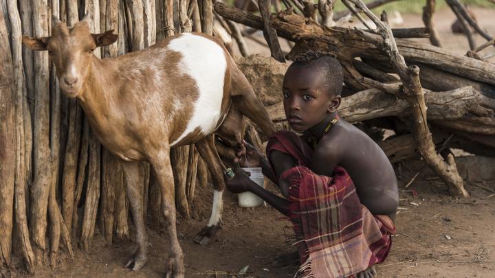 Каждые два дня в мире появляется новый миллиардер, а бедняки становятся всё беднее - Oxfam