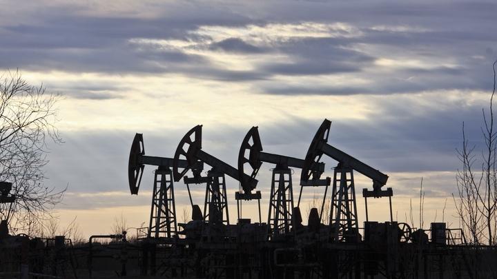 Белорусский завод обвинил российскую нефть в поломке оборудования