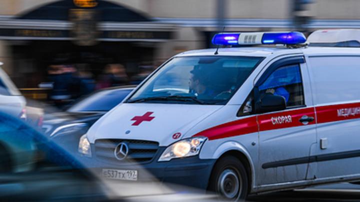 В Подмосковье произошло крушение самолета, на борту была девочка