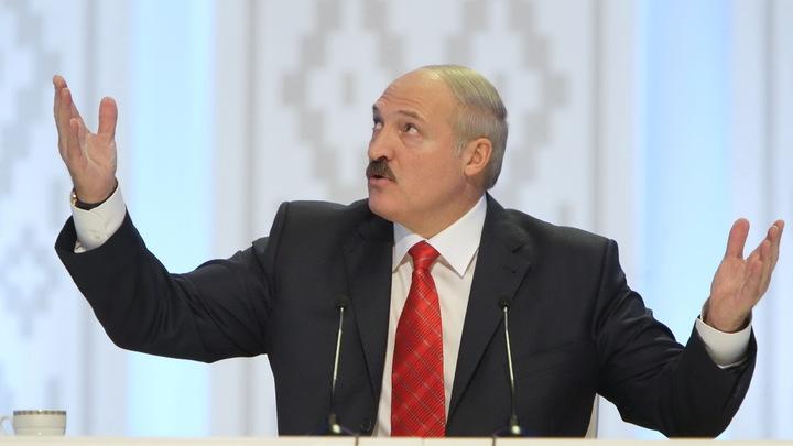 Апписались... А я бы голову свернул!: Лукашенко устроил педагогический разнос чиновникам