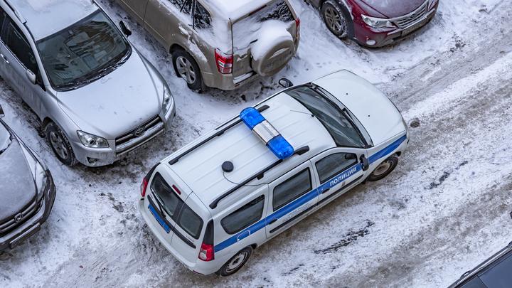 В Петербурге лжеминеры сорвали учебный процесс в восьми школах