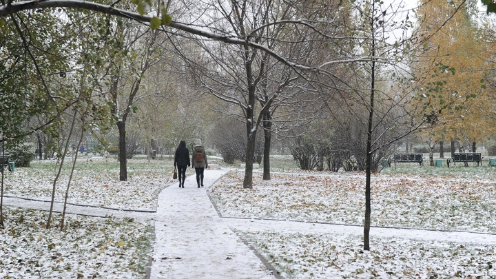 Синоптики рассказали, какая зима ждет жителей России