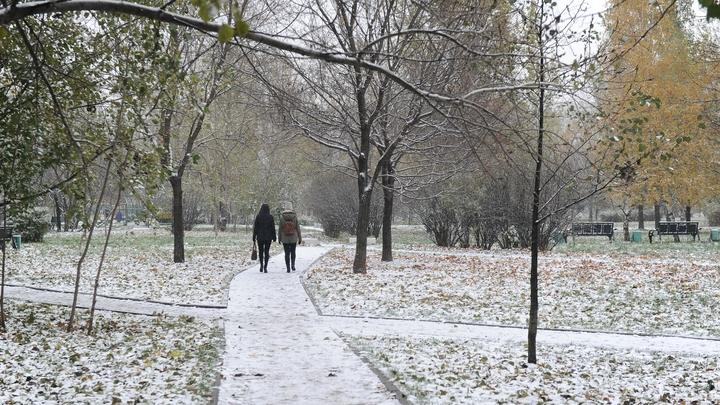 Первый снег в Москве отменили