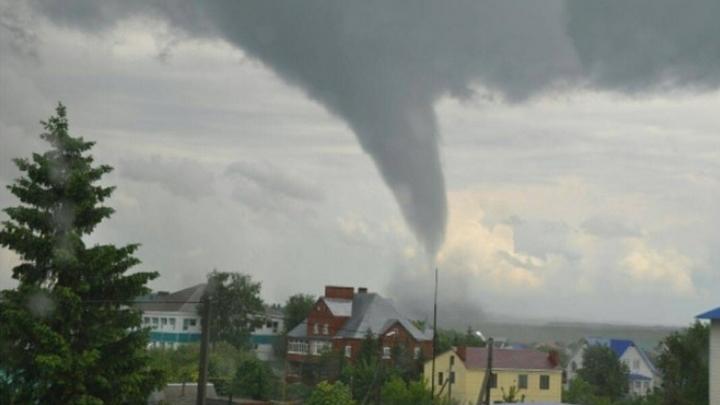 Поваленные остановки и полный блэкаут: Жители Красноярска публикуют фото урагана
