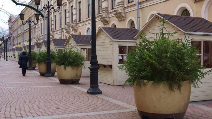 Природе не навредит: стало известно, где взяли деревья для елочных композиций в Санкт-Петербурге