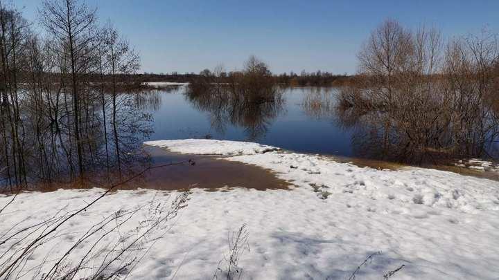 Сухая погода сдержала развитие паводка во Владимирской и Ивановской областях