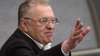 Жириновский: России нужен Гоголь и другие ревизоры