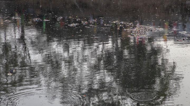 Жители Новосибирска жалуются на странный цвет воды в протоке Оби