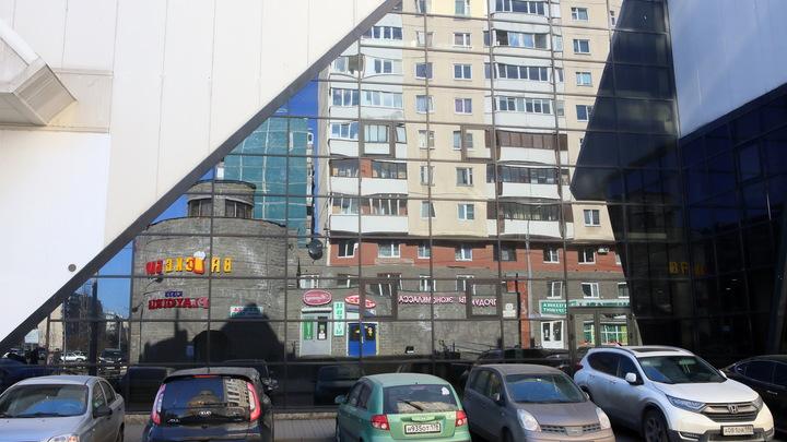 От Camry до ГАЗа: Названы шесть самых угоняемых в Петербурге марок автомобилей
