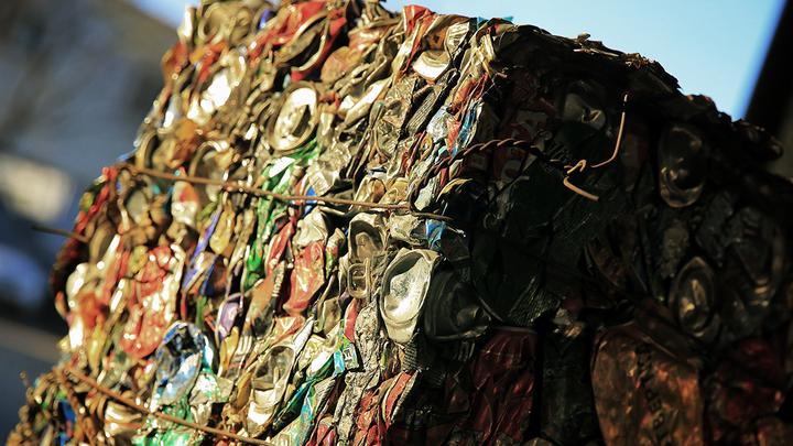 Свалки или раздельный сбор мусора: Подмосковье поставили перед выбором