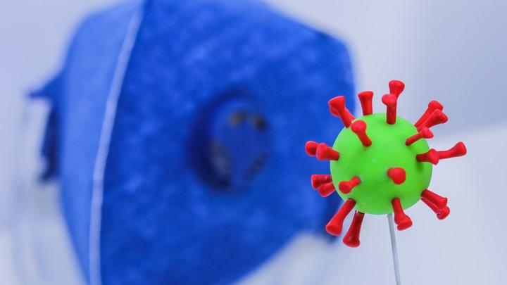 Я бы сделал клипы, социальную рекламу: Вирусолог и похвалил, и отругал врачей за письмо про COVID