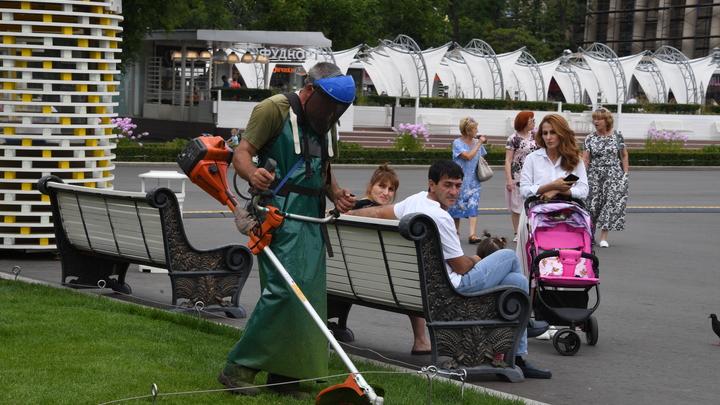 Депутаты Думы запретили косить траву ниже пяти сантиментов в Нижнем Новгороде