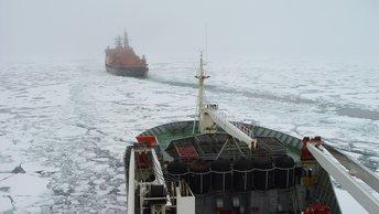 Полярный шелковый путь: В Госдуме верят в русско-китайскую Арктику