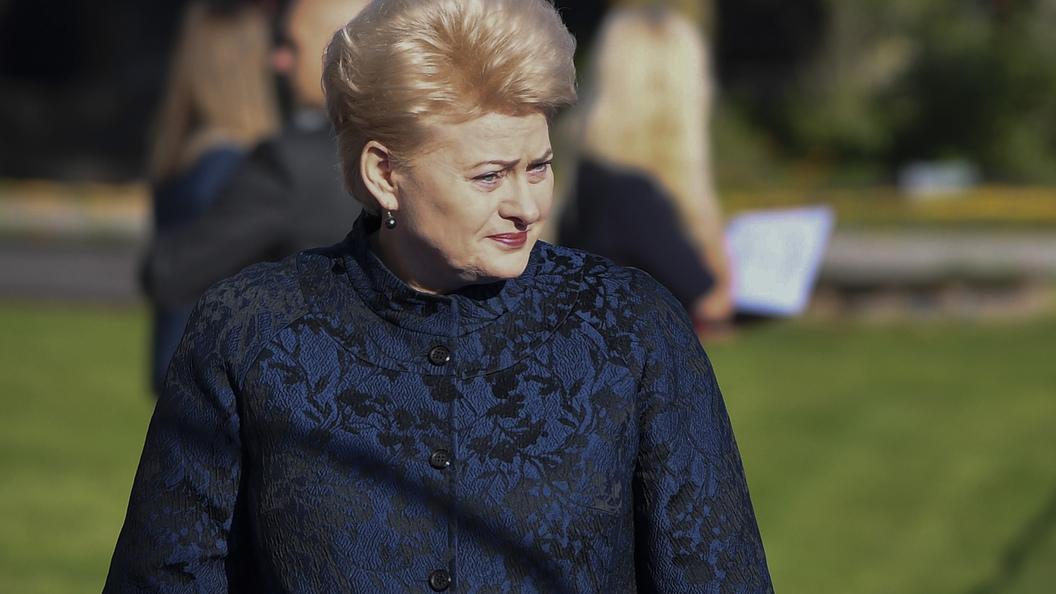 Мы и так много вам помогаем: Президент Литвы одернула Киев, отвечая на вопрос о вступлении в Евросоюз