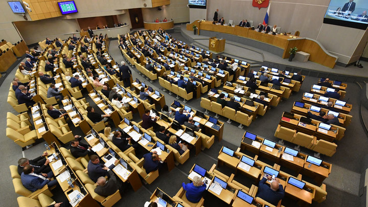 Пять самых странных инициатив депутатов Госдумы