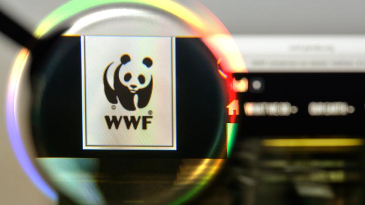 WWF – инструмент построения земного рая для «золотого миллиона»