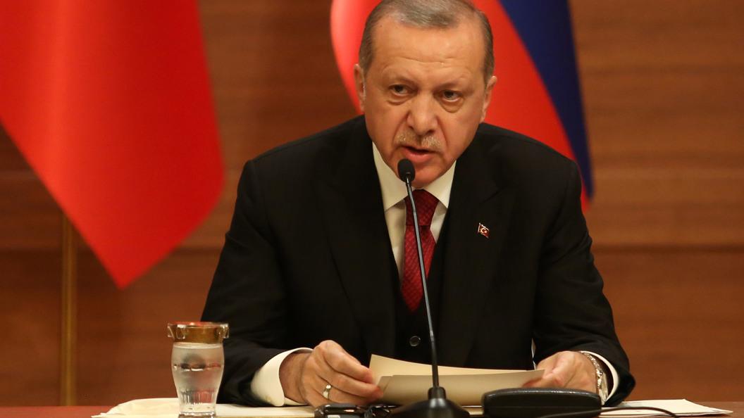 Эрдоган объявил, что удары США иихсоюзников поСирии являются обоснованными