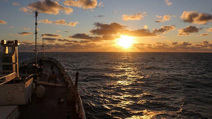 Угрозу всей цивилизации нашли у берегов Антарктиды: Учёные бьют тревогу