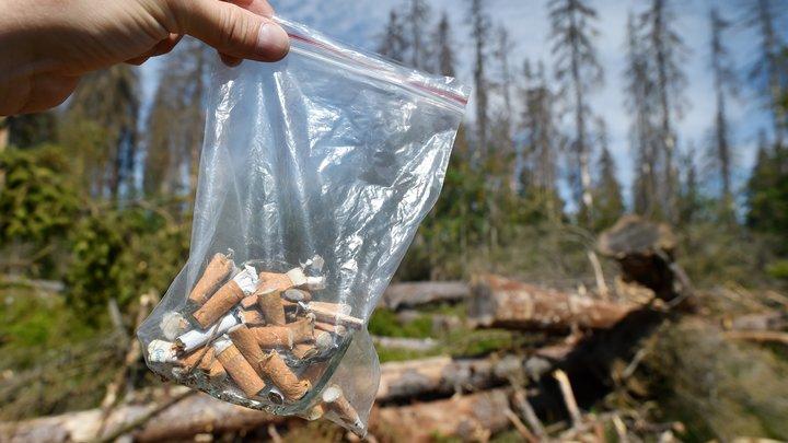 Дело - табак. СМИ узнали о предстоящем подорожании сигарет из-за экологического сбора