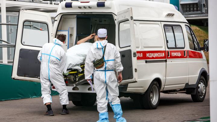 Новосибирские скорые, больницы и поликлиники усилят студентами-медиками
