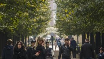 Минэкономразвития: Рынок труда России будет терять 400-600 тысяч специалистов