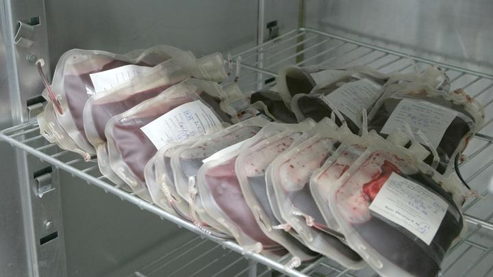 В Кургане обманули донора, готового продать кровь в интернете