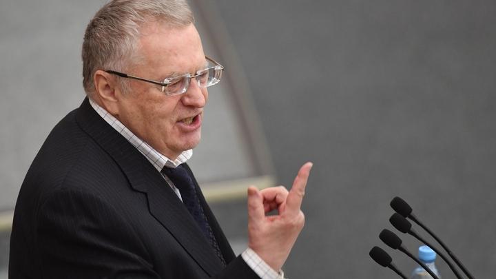 В армии не служили, за границу ездят - Жириновский отчитал кандидатов в президенты России