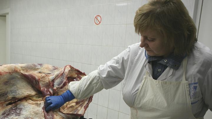 В порту Новороссийска задержано более 19 тонн говядины