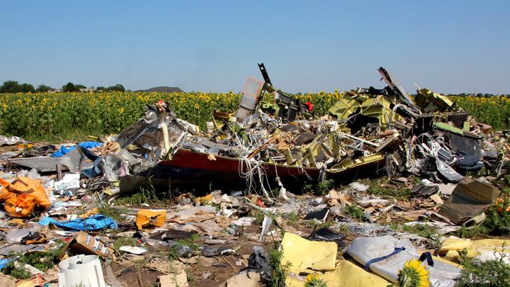 Расследование трагедии MH17: Для Нидерландов недоступный свидетель – самый лучший