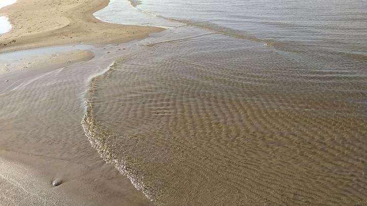 На берегу Азовского моря выловили бутылку с пронзительным посланием