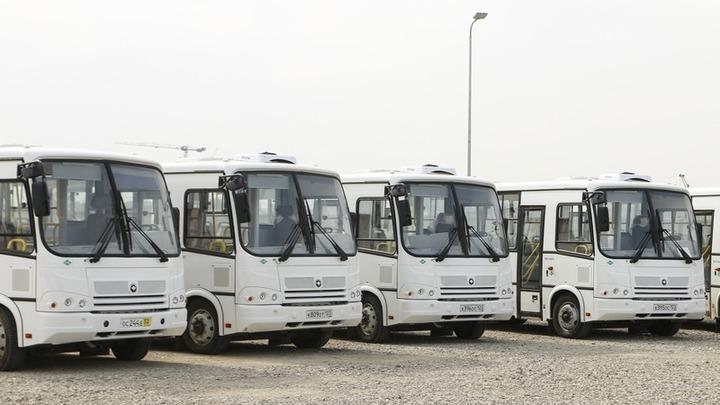 В Краснодаре с 15 марта возобновят работу три пригородных автобуса