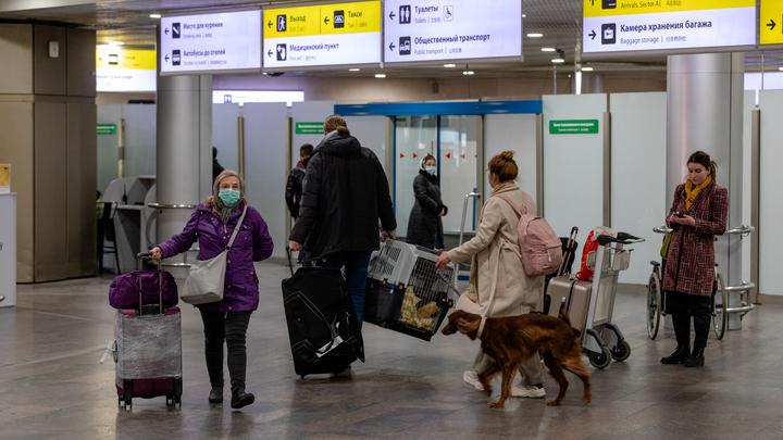 Исчезла гражданка Таиланда, летевшая из Владивостока домой. Её след нашли в Москве