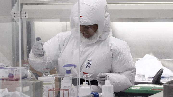 Вслед за короной пришёл аренавирус: Боливийская зараза стала передаваться от человека к человеку