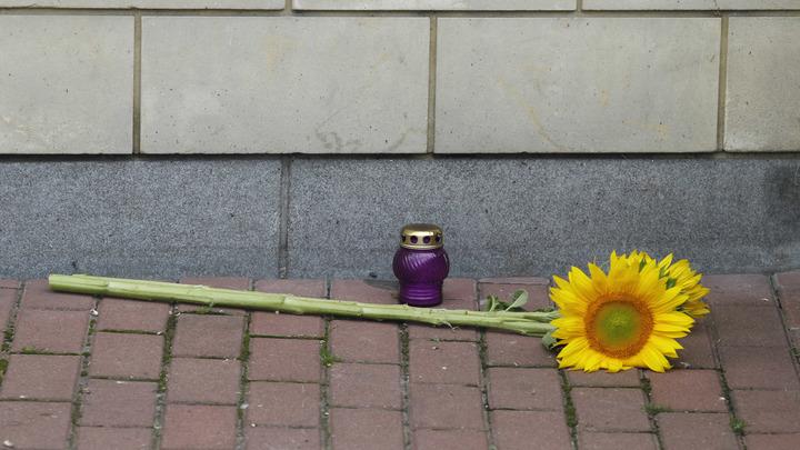 Уже не в первый раз: Болгары винят Украину в крушении MH17