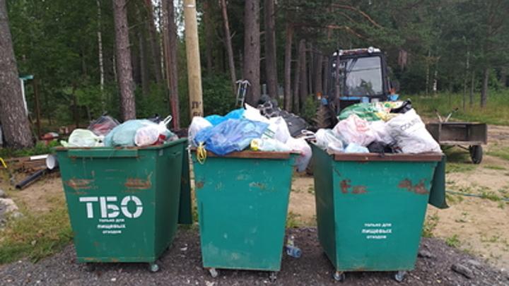 Это нам не задавали: Забайкальский мусорный оператор отказался вывозить ботву