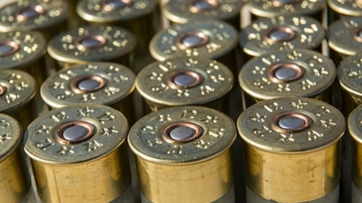 Гранаты, сотни патронов: В Крыму сотрудники ФСБ обнаружили тайник с арсеналом