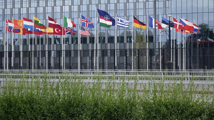 НАТО стало змеёй, которая кусает сама себя за хвост: В чём прав Макрон