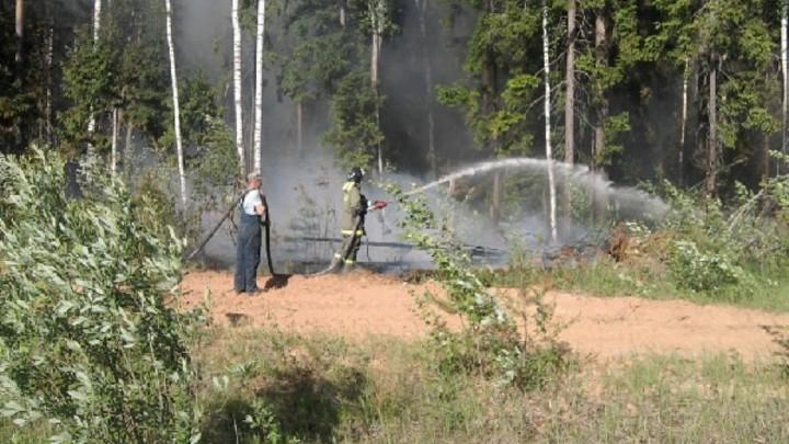 Лесной пожар в Ильинском районе Ивановской области тушили два дня