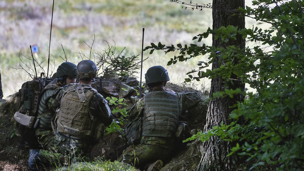 Литва обкатает своих добровольцев на войне в Донбассе