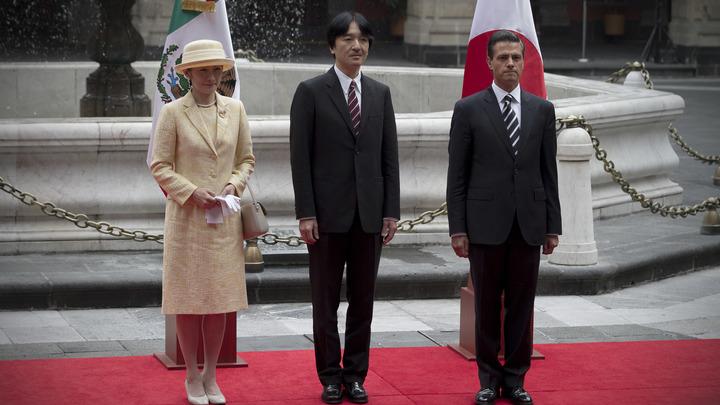 Made by Фумихито: Наследный принц Японии сделал врачам уникальный подарок