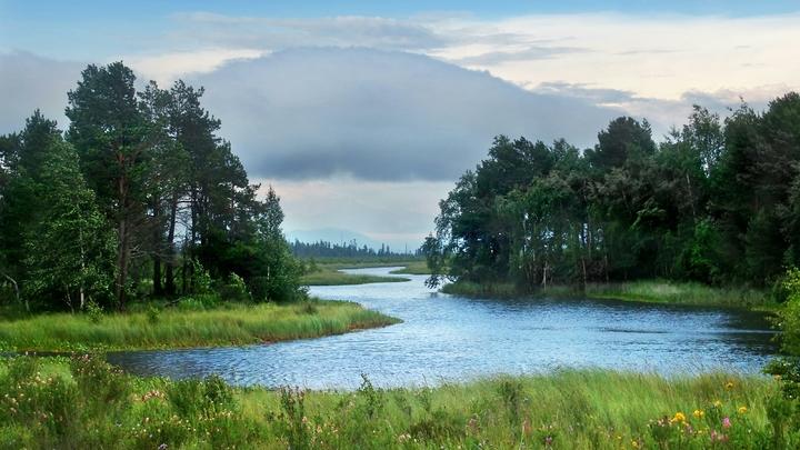 Мутное болото коррупции одолело дамбу в Тулуне: Кто будет отвечать за наводнение в Иркутской области?