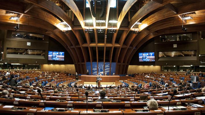 У делегата Украины случилась истерика после русского выступления серба в ПАСЕ – видео