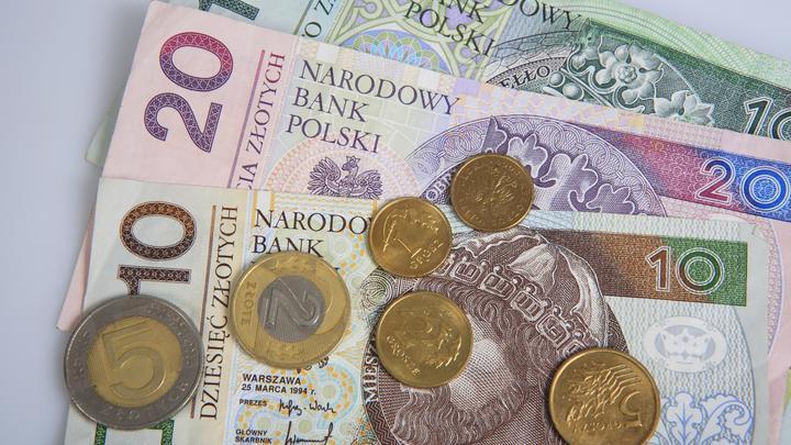 Злотый защищает Польшу от неравенства экономик – Качиньский