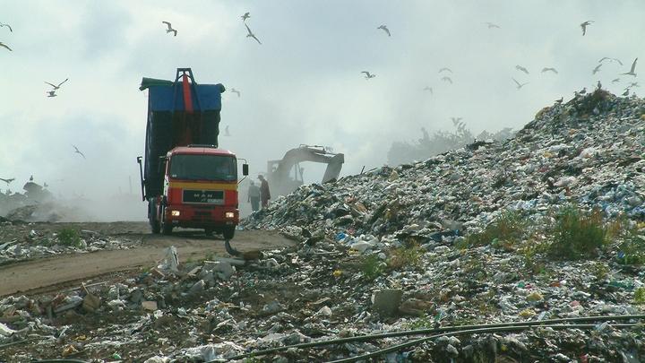 11-тонную свалку ликвидируют в Солнечногорске
