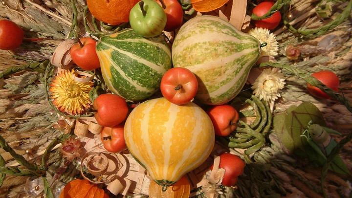 Меньше на 23%: Учёные рассказали, какие продукты могут снизить риск инсульта