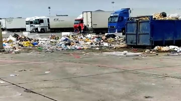 В Ростове территория новой ярмарки для торговцев с аксайских рынков утопает в мусоре: Кто виноват?