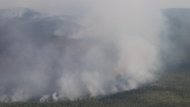 В Забайкалье в Балейском районе горит 10 гектаров леса